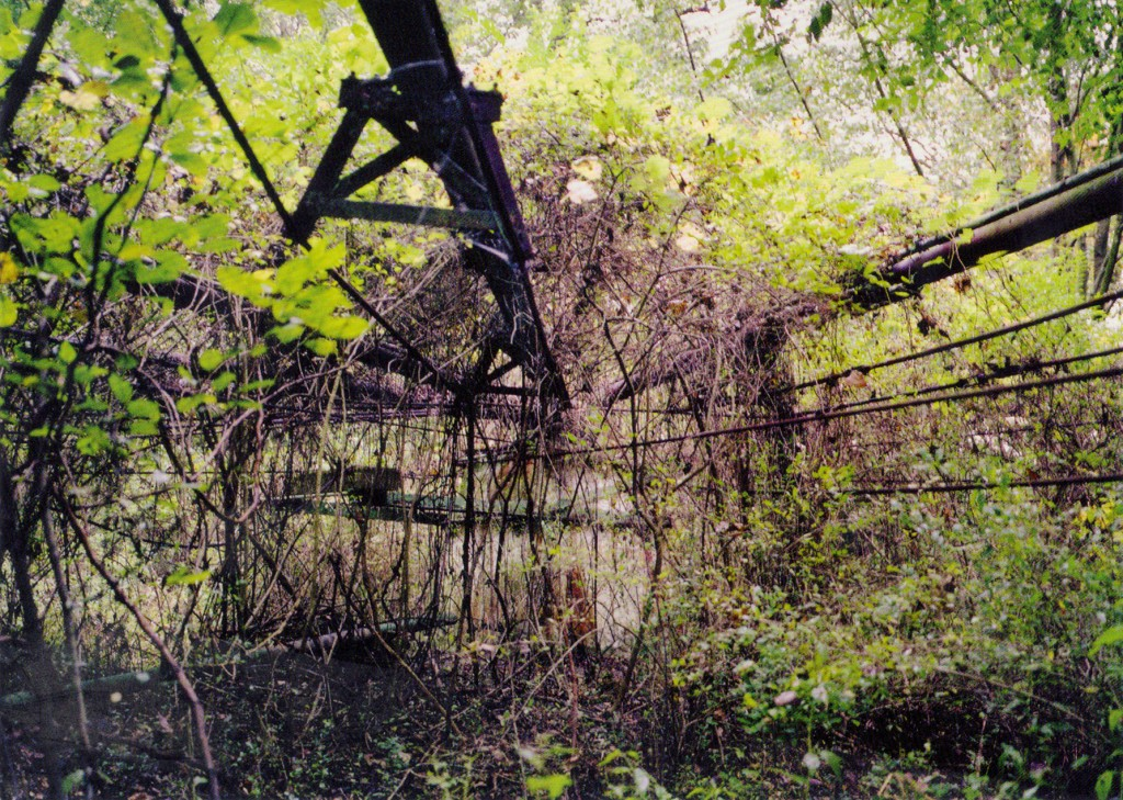 john-wiese-black-magic-pond-postcard-a